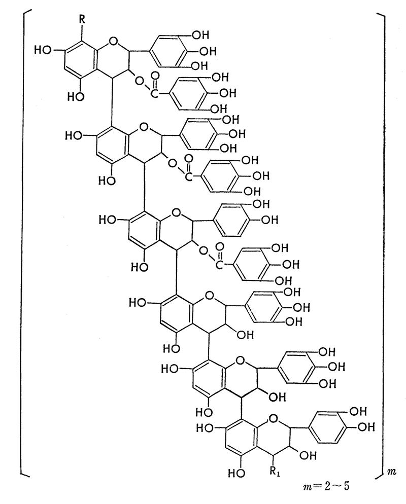 プチ化学:柿渋の構造